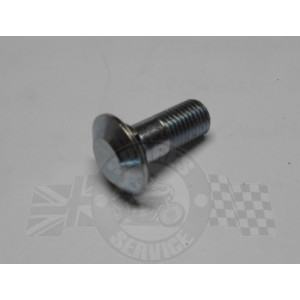 Chainguard bolt