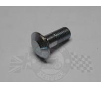 Chainguard bolt